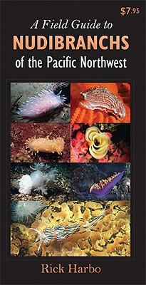 A Field Guide to Nudibranchs of the Pacific Northwest By Harbo, Rick